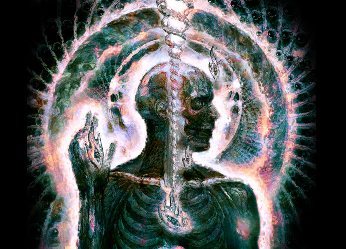 Lateralus By Egg Revolution