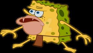 Esponja Gar / Sponge Gar