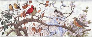 Bird Seasons