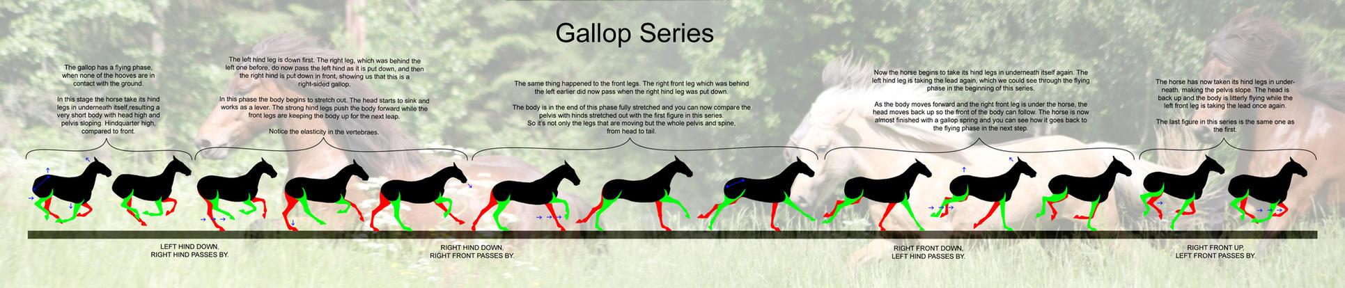 Gallop by FanaticKoRnFreaK