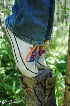Shoe Tip Toe II