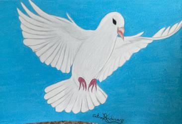 White dove: Condolences gift (March 2021)