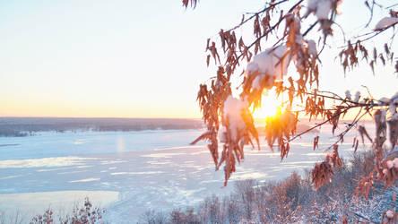 Winter sun by Belolis