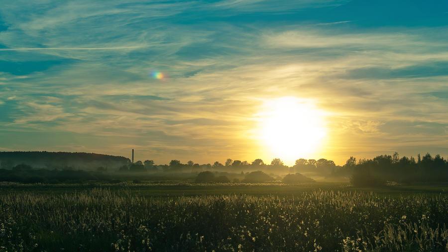 Sun summer by Belolis