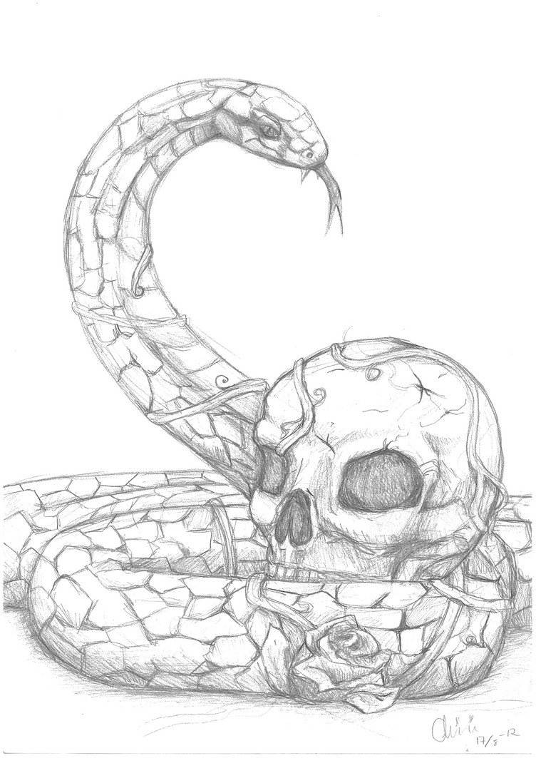 Snake Skull by xChiakiix on DeviantArt