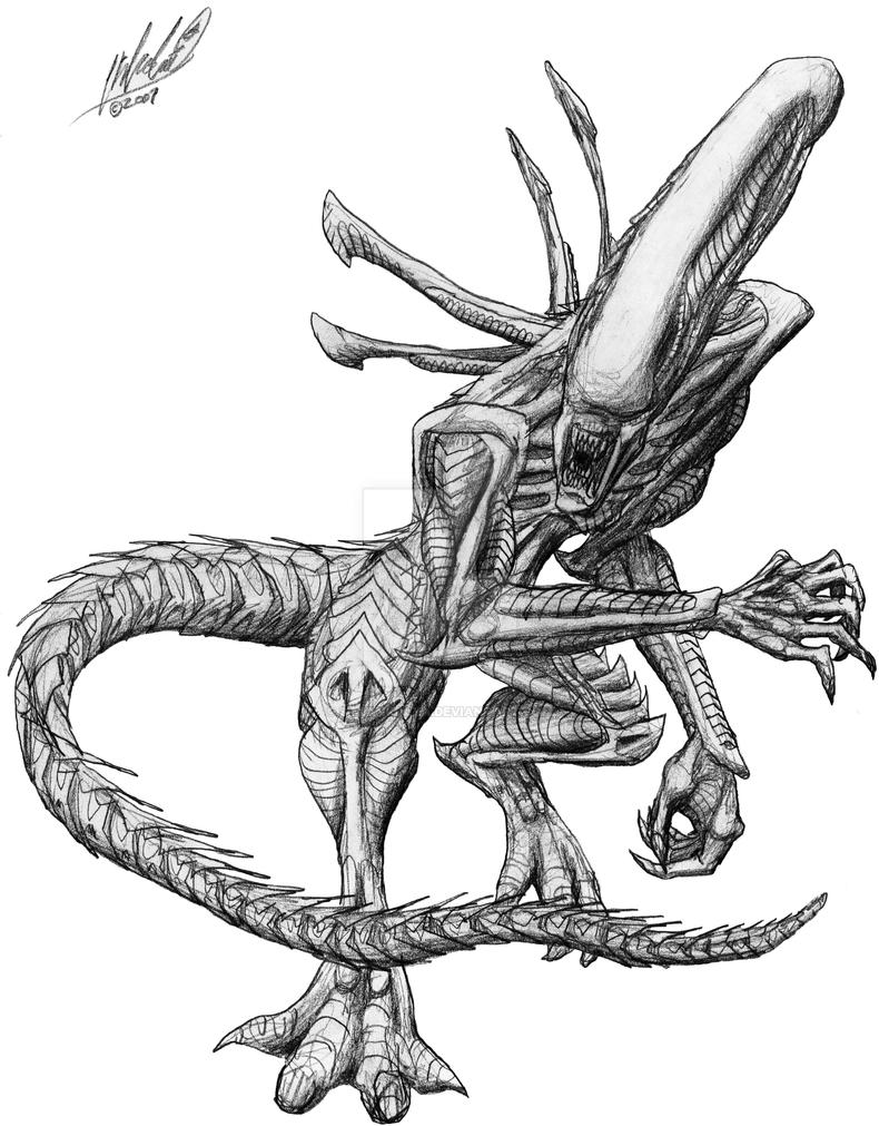 Xenomorph drone sketch by simiankolya on deviantart for Xenomorph coloring pages