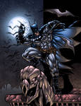 The Dark Knight (COLORS)
