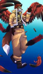 Kit Hawks