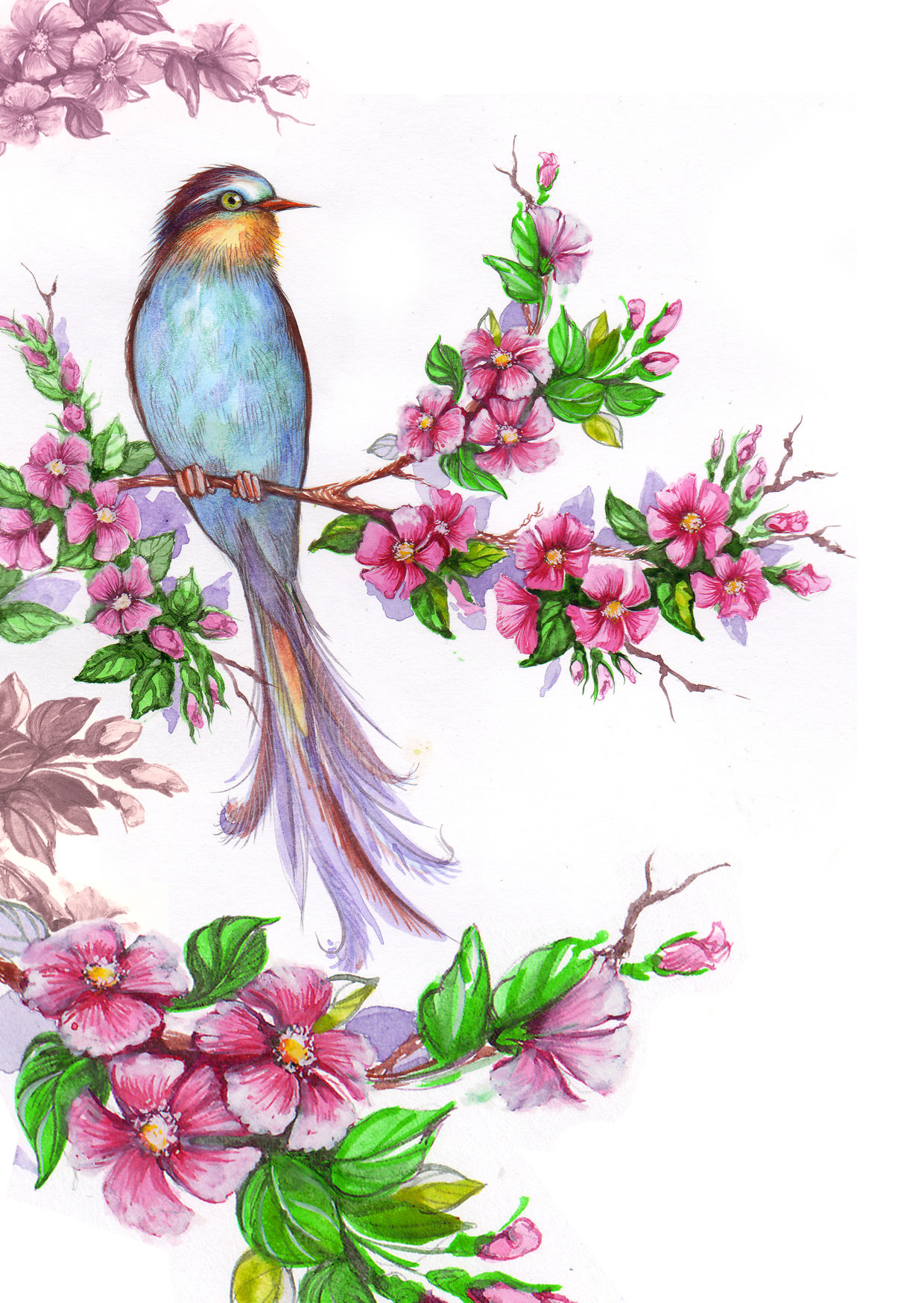 This is a picture of Eloquent Bird Of Paradise Drawing