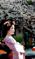 maiko by l337Jacqui