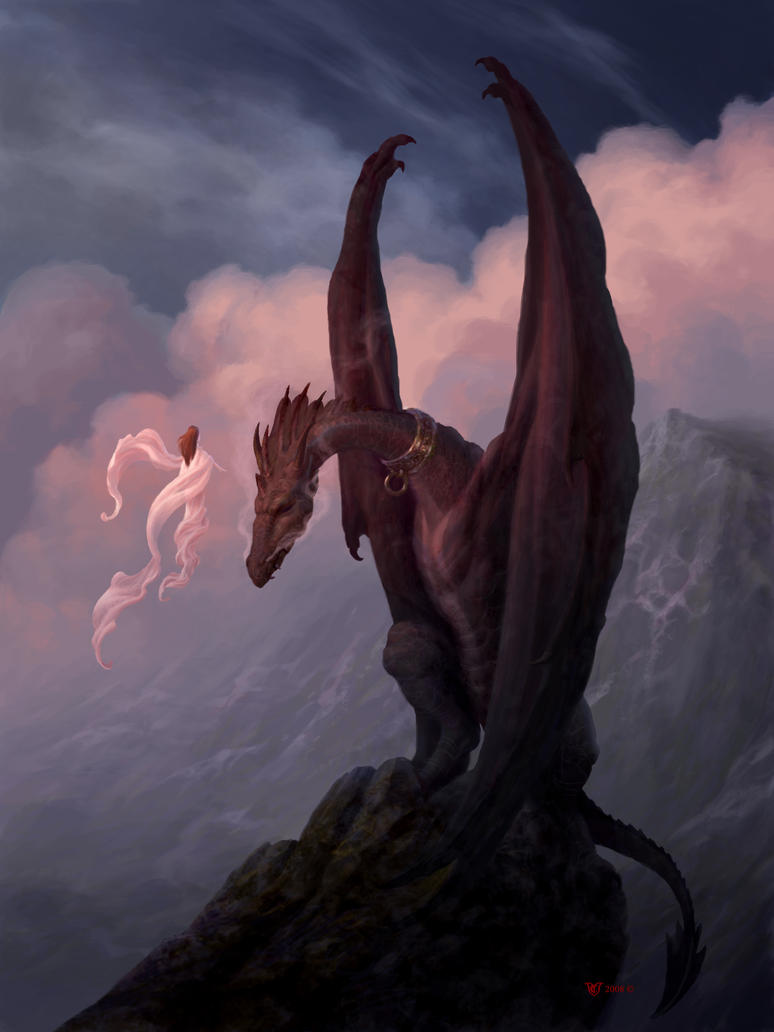 The Taming of Naas by Christophe Vacher