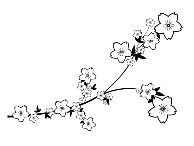 Sakura Blossoms Design 4 by Nuying