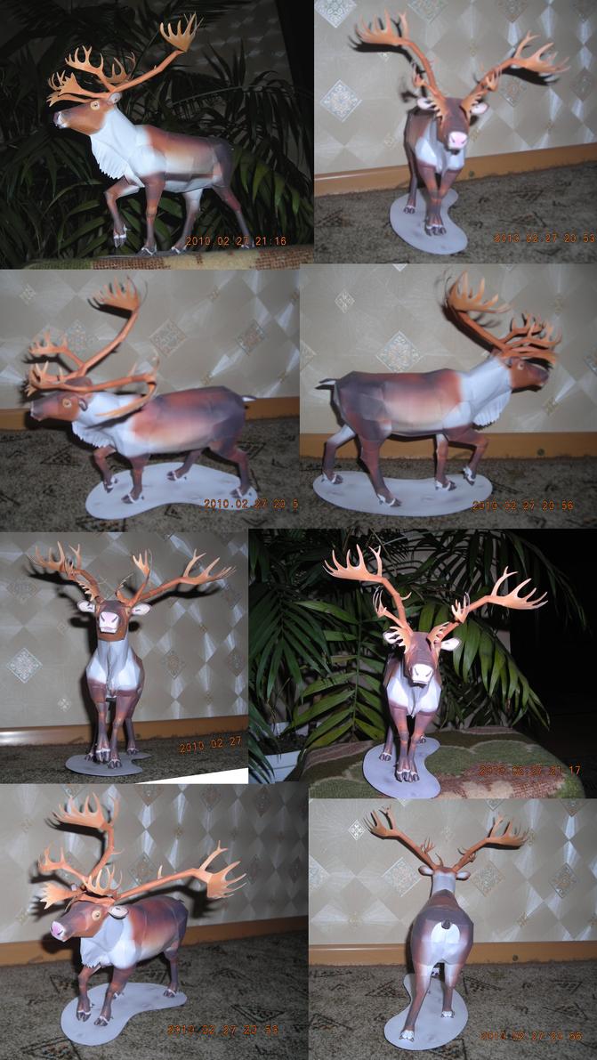 Reindeer papercraft 3 by Weirda208