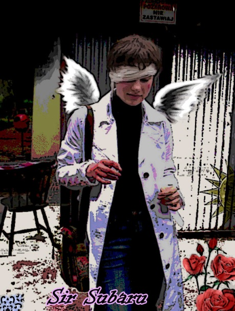 SirSubaru's Profile Picture