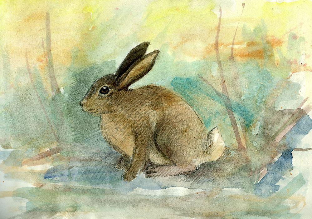 rabbit by SirSubaru
