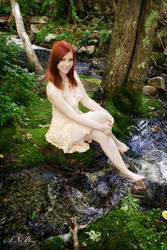 Summer in the Forest 2 by EvelynVictus