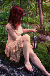 Summer in the Forest 3