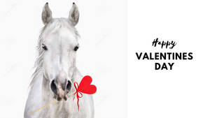 Valentines Day Horse 2 by Creativa-Artly01