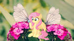 Little Butterfly Friend by Creativa-Artly01