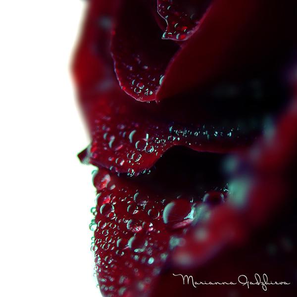 Blue Diamonds by Marianna9