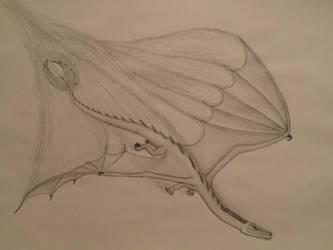 Shadow -Draco umbra by HawkTooth