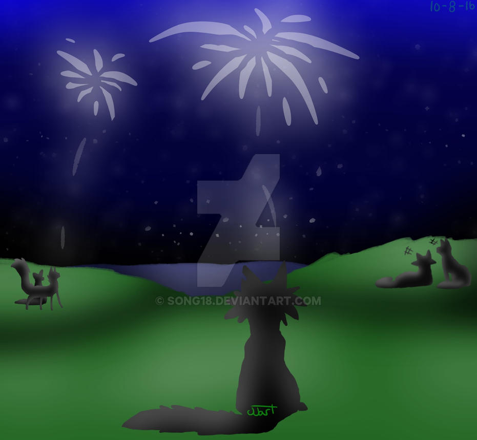 Firework show by Song18