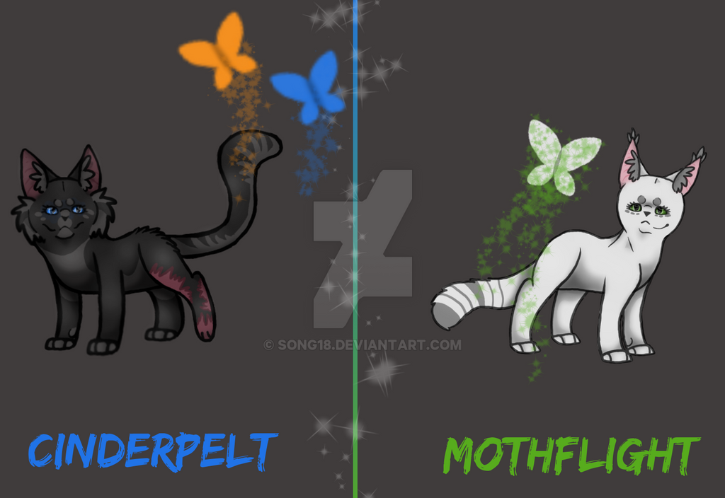 Here comes a thought Cinderpelt and Mothflight by Song18