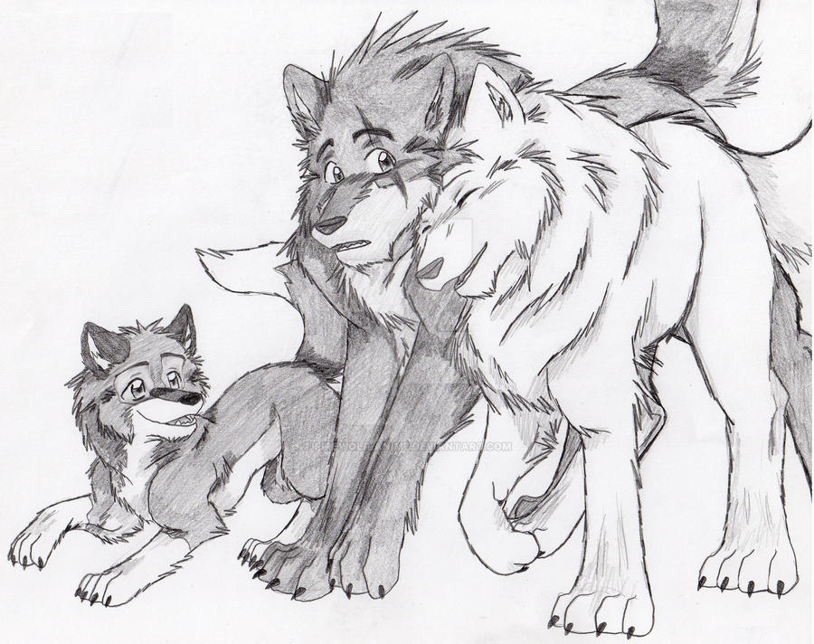 Wolf Pups Playing Drawing