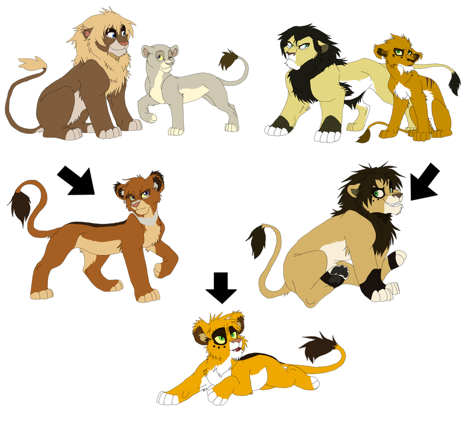 Lion Family Tree By Firewolf Anime