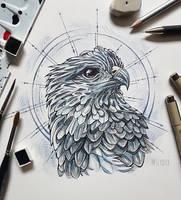 Grey Eagle Portrait by MsLydix