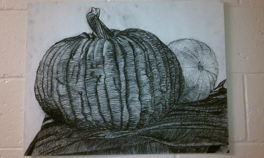Contour Line Drawing Pumpkin : Cross contour pumpkins by coopwear on deviantart