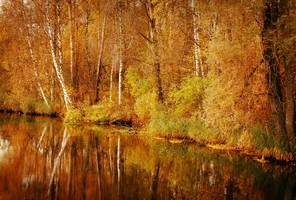 Magical autumn by Fragoline