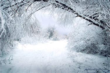 Winter by Fragoline
