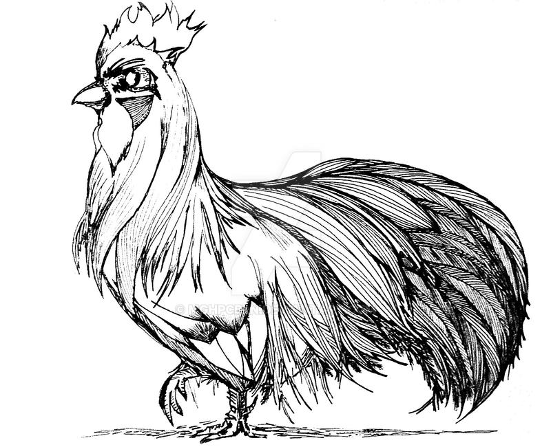 Rooster, for redesign by SyA by MgHPcbln