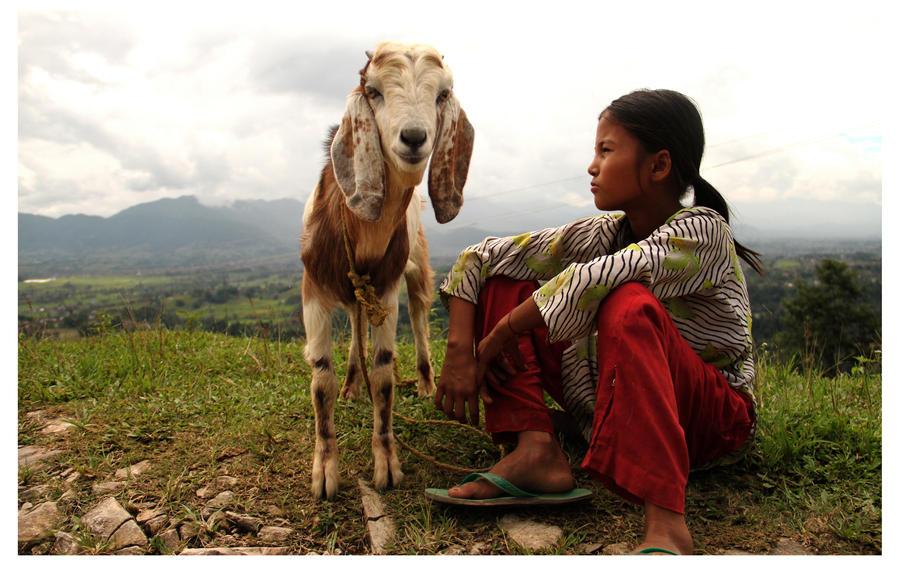nepal 5 by mechiz