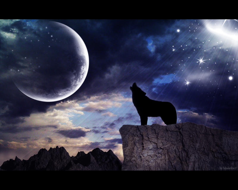 Howling Wolf By TaladarkieJJ On DeviantArt