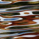Reflections on water and Fried egg
