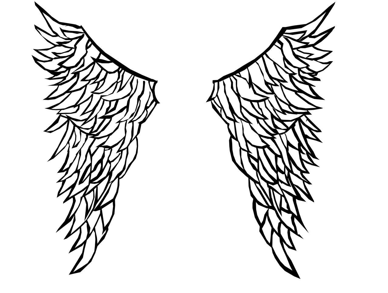 Wings Outline Hav Deviantart