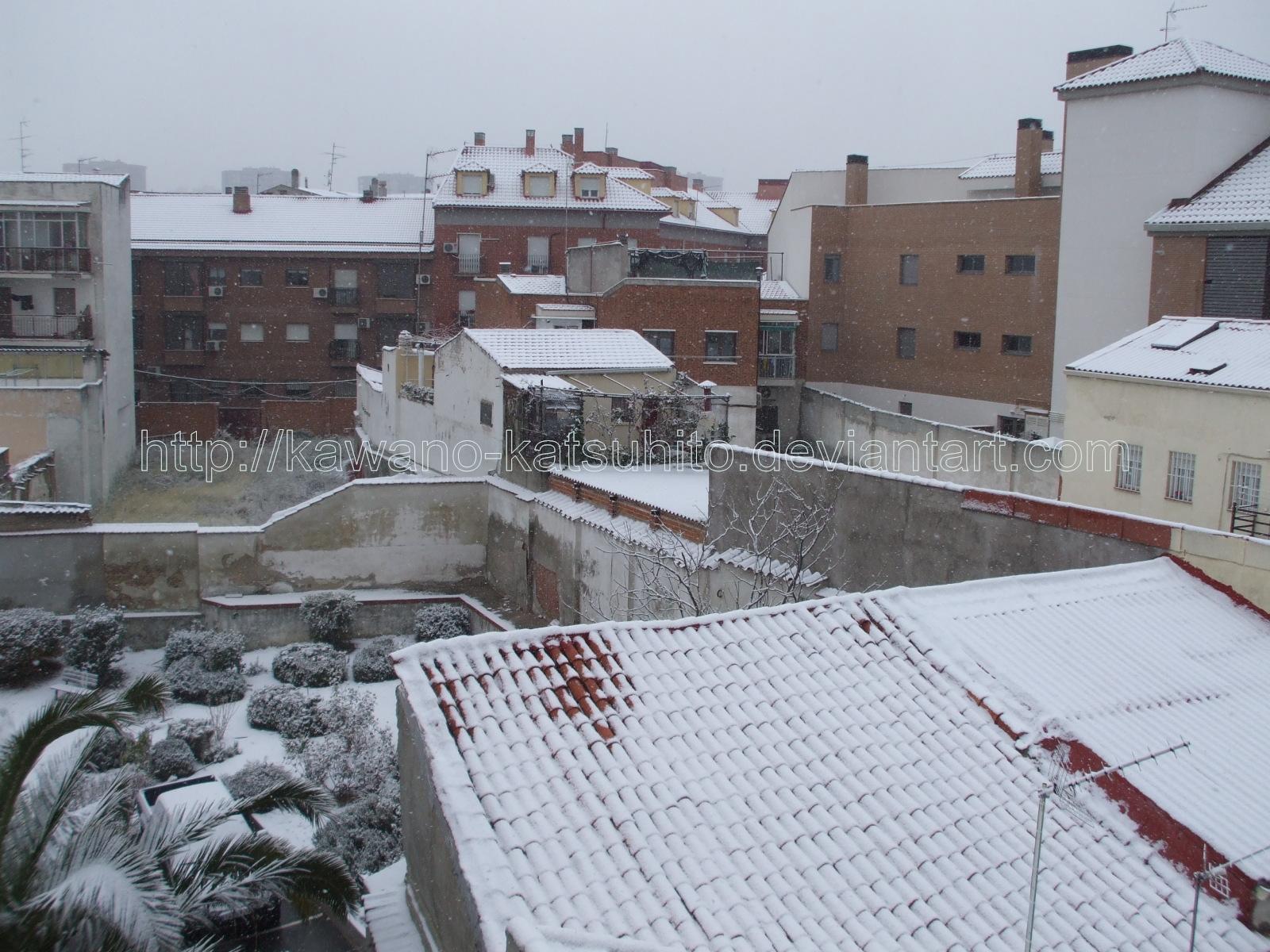 Snow in Madrid, 9-1-2009: 1