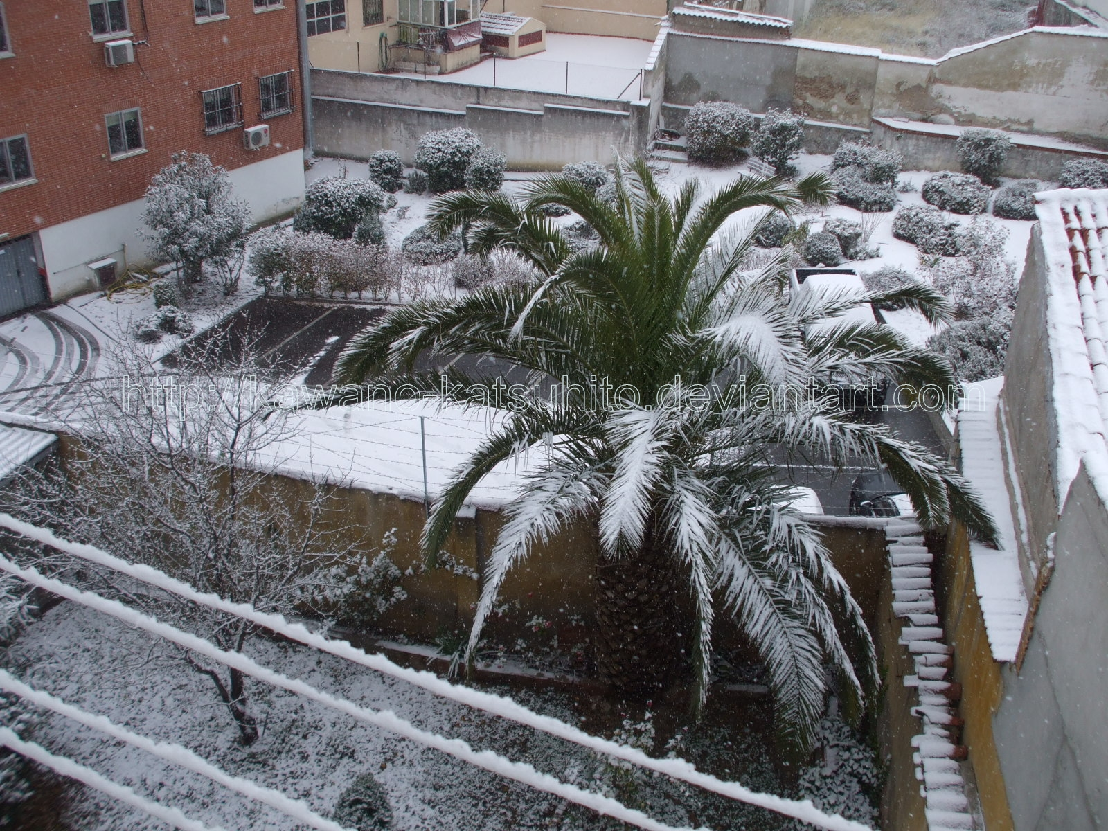 Snow in Madrid, 9-1-2009: 2