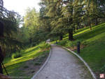 Western Park, Madrid - 1 of 5