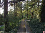 Western Park, Madrid - 3 of 5