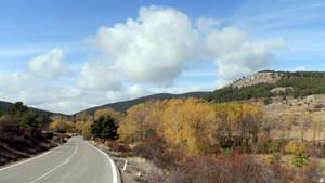 The colours of fall near Orihuela