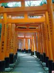 Tunnel of toriis