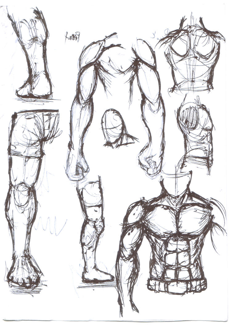 Human Figure Sketch By GCAkeith On DeviantArt