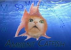 Cat fish by starcatfri