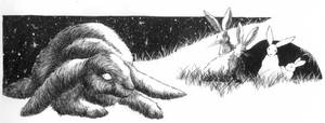 watership down chapter heading