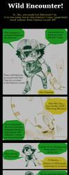 Pokemon: Wild Encounterdsz by AmukaUroy