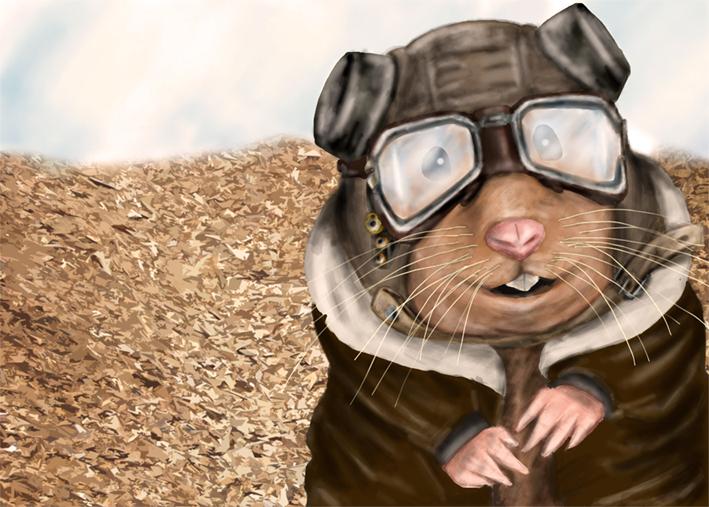 Resultado de imagem para hamster pilot