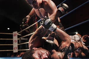 MMA by stardock